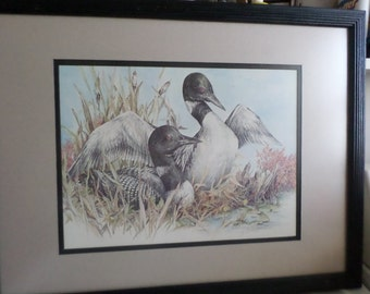 Mated Pair/LOONS/1985/LINDSTRAND/Doug/Signed/With Embossed Seal/Wood Frame/NonGlare Glass/Water Fowl/