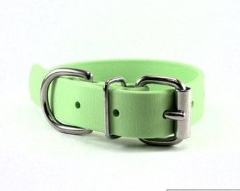 "Mint Pastel Green - 1"" (25mm) Wide Biothane Dog Collar - Leather Look and Feel - Pastel - Waterproof - Stainless or Brass Hardware"