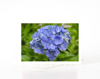 Blue Hydrangea Flower Cards, Blank Photo Greeting Cards, Blank Photo Note Cards, Card Sets, Summer, Flower Photography, Nature Photography,
