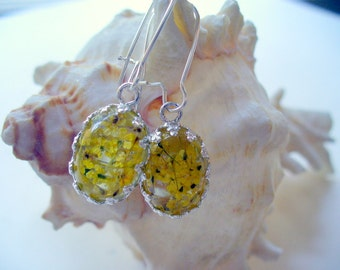Oval Yellow Dry Flower Drop Earrings, Yellow Jewelry, Silver Jewelry, Resin Oval Crown Dangle Earring, Dried Flower Earring, DLAbeaddesign