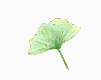 Ginkgo tree art print from original watercolor painting //wall art for home decor, botanical print, green gift, wall decor, gift for him
