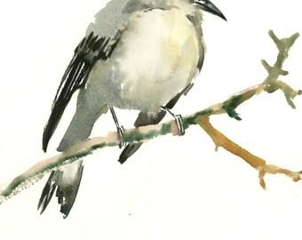 Mockingbird, original watercolor painting, 8 x 10 in, bird lover art, birding, bird painting