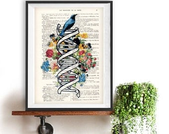 DNA art print,cimestry, laboratory, vintage science, flower print, bird print, vintage print on recycled paper, retro art