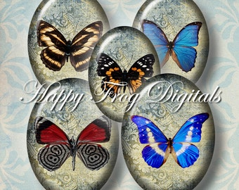 Butterflies - 30x40, 18x25 and 13x18 mm ovals  - Digital Collage Sheet - 366 HFD - Printable Download - Instant Download
