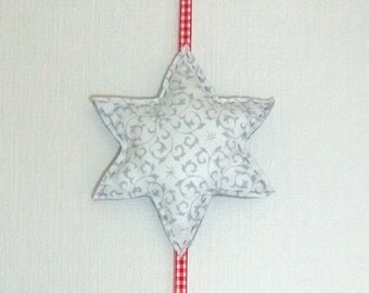 Pendant star with picture frame and star dust