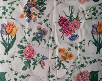 Vintage Rose Pansy Tulip Botanical Print Upholstery Fabric Material Remnant - 30 X 84