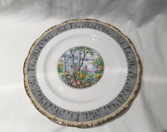 "Royal Albert Silver Birch 10 3/8"" Dinner Plate"
