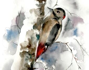 Original Watercolor Painting of Woodpecker, bird painting, bird art, watercolour art
