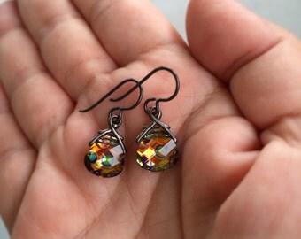 Briolette Earrings, Niobium Earrings, Metallic Earrings, Black Earrings, Hypo Allergenic Earrings, Small Dangle Earrings