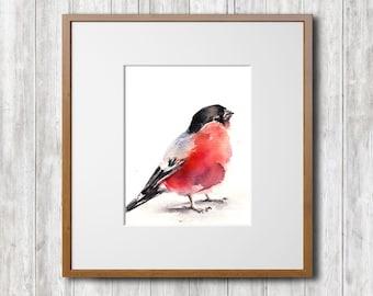 Bullfinch Watercolor Print, Bird Watercolor Painting Art Print, Bird Art, Wall Art