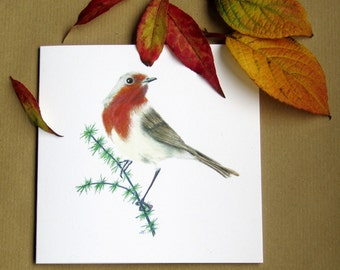 "ROBIN REDBREAST - Hand made original watercolour painting on white greeting card (blank inside) 5""/12.5cm original nature wildlife bird art"
