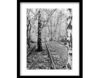 train tracks, tree photography, black and white photography, train photography, railroad photography, black and white photography prints