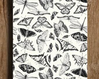 Butterfly Blitz A4
