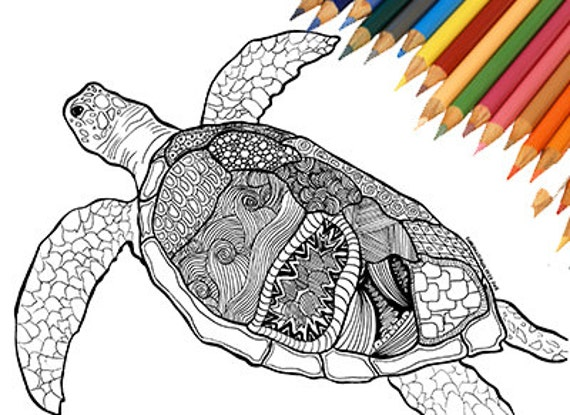 Coloring page sea turtle print