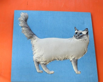 stretched cotton canvas of a 3 legged cat . vintage gray cat portrait . large siamese cat picture, blue and gray . funny art, wall decor