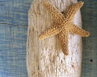 Sun Bleached Driftwood, Wedding Driftwood, Chunk, DriftWood Display, Beach Wedding, Natural, Prop, Nautical Bathroom, Art, Driftwood piece