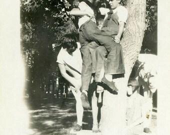 "Vintage Photo ""The Popular Tree"" Playing Snapshot Photo Antique Photo Black & White Photograph Found Photo Paper Ephemera Vernacular - 15"
