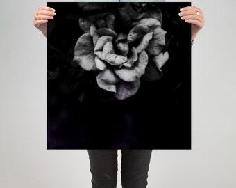 "Floral 9 ( 24"" X 24"" Print )"
