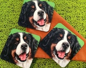 Sweet Bernese Mountain Dog Coasters, Pop Art Dog Coasters, Gift for Berner Lovers, Colorful Bernese Gifts for the Home, Gifts for Dad