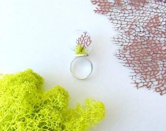 Mermaid Terrarium Ring with Purple Sea Fan and Reindeer Moss