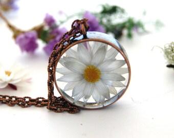 Terrarium necklace. Real Daisy necklace. Australian daisy .White flower necklace. Botanical Copper Resin Jewellery. OCEAN PETALS reg DESIGN