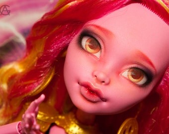 "Monster High repaint   Custom doll 17"" BJD MSD Size"