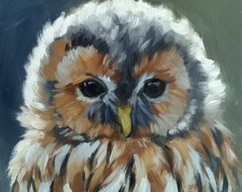 Owl print - tawny owl - owl painting - bird painting - fine art print - bird painting