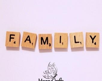 Wooden Letter Magnet Word Family