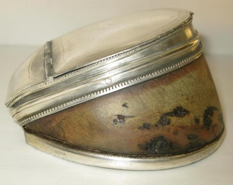 Vintage Victorian Taxidermy Horse Hoof Silver Snuff Box Case Desk Tidy C1880