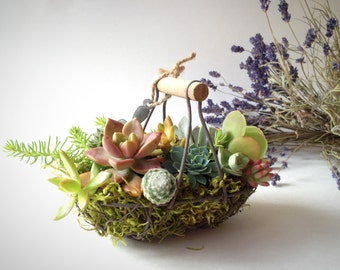 Country chic succulent basket/vintage egg basket/miniature garden/wedding favor/wire basket/succulent arrangement/moss/rustic decor