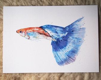 fish: blue guppy