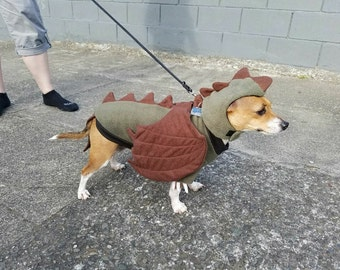 Dragon Dog costume, Games of Thrones, Dragon