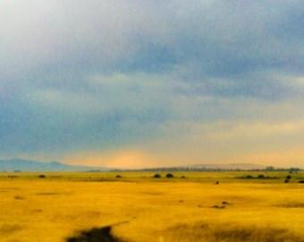 yellow and blue desert