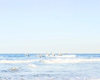 Beach Photography, Coastal Decor, Pelican Art, California Ocean Print, Sea Blue Wall Art, Beach Wall Decor, Light Seascape, Water Photo