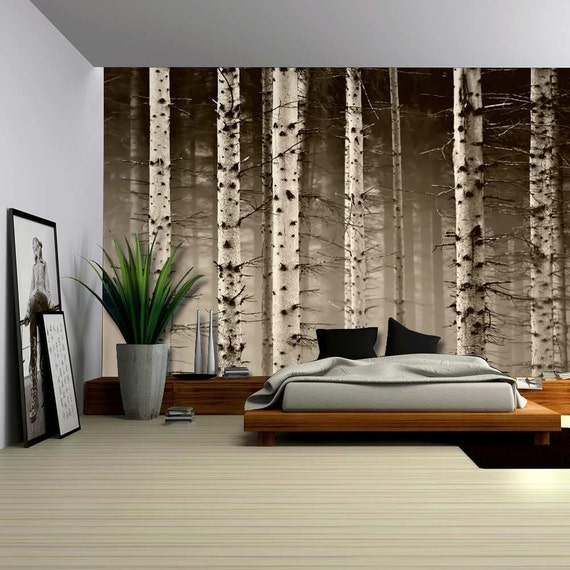 A close up view of a birch tree forest wall mural removable for Birch wall mural