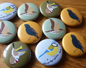 Little garden bird magnets II