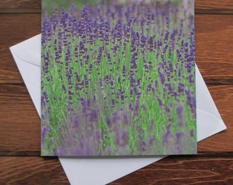Lavender Greetings card 14cm square