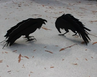 Free Shipping!, Two Old Crows, Steel Raven, Steel Crow, Garden Ornament, Crow Statue, Raven Statue, Pair of Crows, Rusty Steel, Gnarly Raven