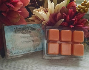 Whipped Pumpkin Pie Soy Wax Clamshell Tarts