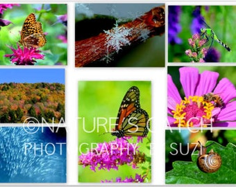 Foldover NOTE CARDS - Nature Images Photography with Envelopes (Pack of 8)