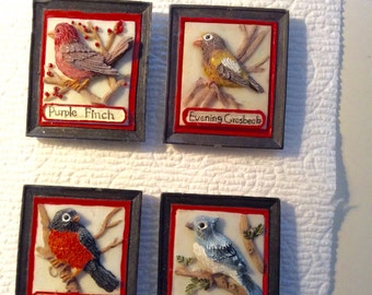 4 American SONGBIRD REFRIGERATOR MAGNETS -- Set of 4!