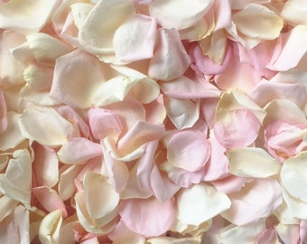 Rose Petals, Ivory & Blush blend, REAL freeze dried rose petals, perfectly preserved