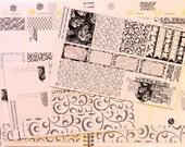 ECV-0107-MK Black and White Floral Boho/Shabby Chic/Vintage Mini-Kit - Erin Condren, Plum Paper, Filofax
