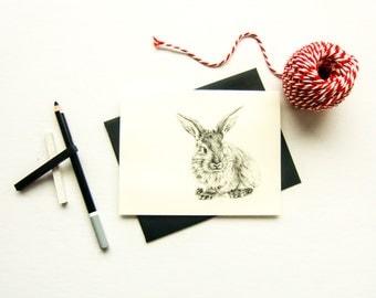 The rabbit card