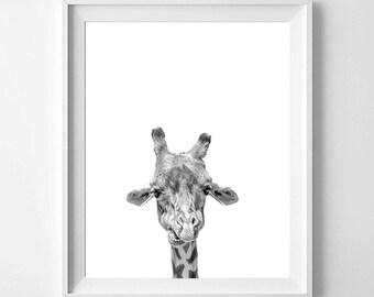 Giraffe Print, Giraffe Photography, Black And White Animal Print, Giraffe Wall Decor, Giraffe Print, Pets, Nursery Art, Printable Art