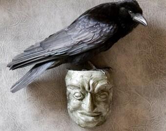 Taxidermy Carrion Crow on a Gargoyle