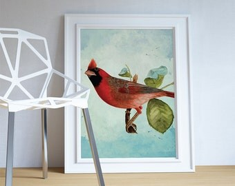 Vintage Red Cardinal Print Antique Bird Print Vintage Bird Prints Illustrated Bird Print Bird Wall Decor Natural History Wall Art