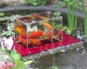 Flying Aquarium Fish Observatory floating tank garden pond KOI Goldfish over water surface Beobachtungsbecken 2500 red