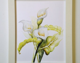 Calla Lily Watercolor Illustration, Art Print, 5x7, 8x10