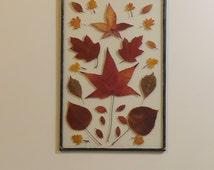 Leadlight Botanical - Autumn Leaves